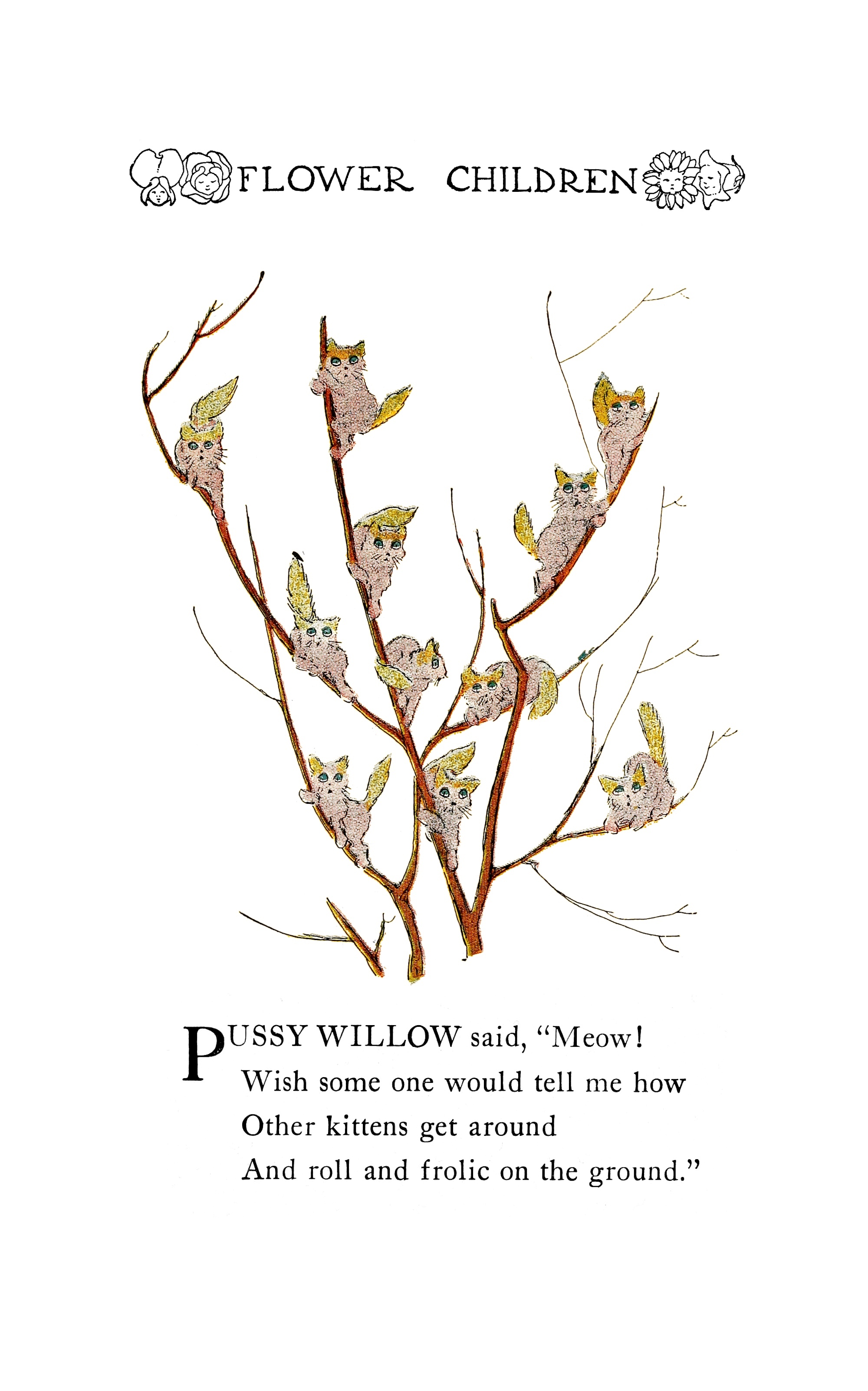1910 Pussy Willows Flower Children by Elizabeth Gordon with illustration by M.T. (Penny) Ross.