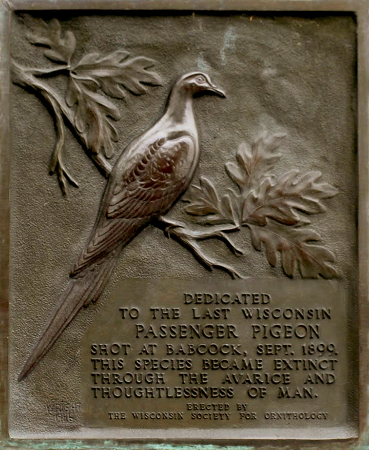 Plaque on the monument in Wyalusing State Park that memorializes the passing of the Passenger Pigeon.
